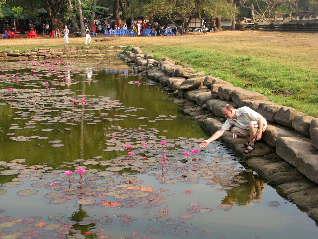 Пруд с лотосами в Ангкор Вате