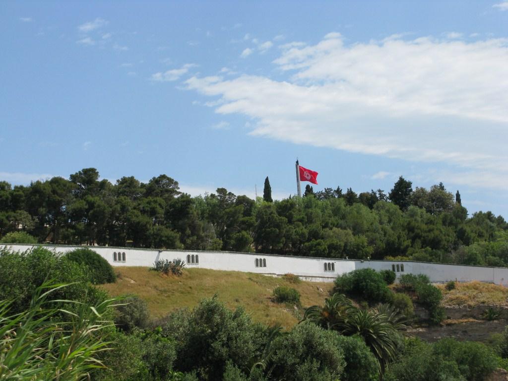 Президентский дворец Туниса